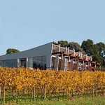 Wild Dog Winery and Restaurant