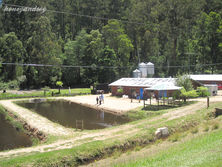 Alpine Trout Farm
